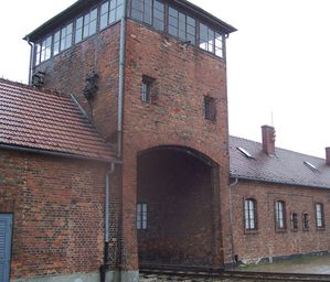 QUESTION-N--19-AUSCHWITZ-3eme-2010.jpg