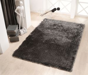 Tapis shaggy dream argent