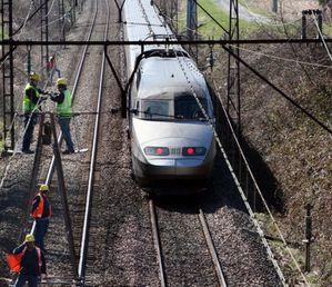TGV 25