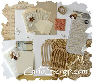 visuel kit cartoscrap
