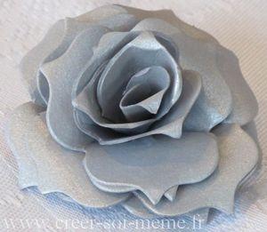rose-noel-argentee.jpg