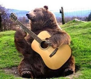 ours et guitare