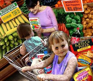 OGM-MONSANTO-CANCER-6.jpg