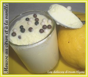 Mousse au citron (10)