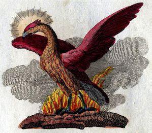 Phoenix-Friedrich Justin Bertuch, 1790-1830 Co Wikimedia
