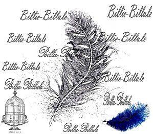 billie billule 4 ans
