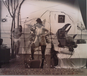 Witkin---Bogota--2008---Beaudoin-Lebon.png