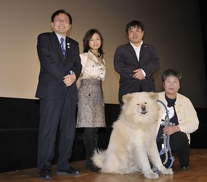 wasao-akita-inu-dog-movie.jpg