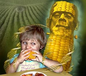 OGM-MONSANTO-CANCER-5.jpg