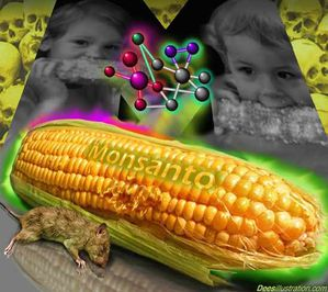 OGM-MONSANTO-CANCER-7.jpg