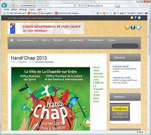 CDSA 2013r