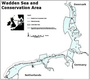 wadden sea conservation area