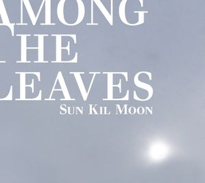 Sun-Kil-Moon_Among-the-leaves.jpg