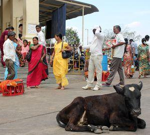 Karnataka-042.JPG