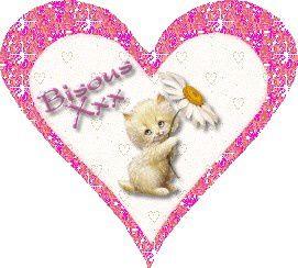 bisousxxx-chat-fleur-coeur.jpg