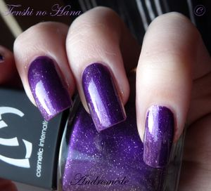 swatches constellations 01