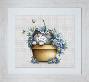 kitten-in-flowers-luca-s