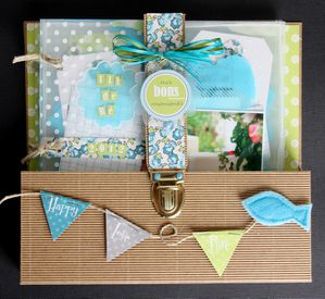 LauraPack-Swilrcards 5993