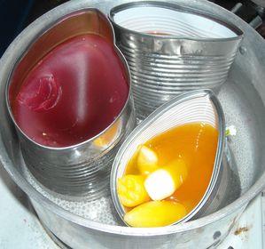 bougies yaourt 018