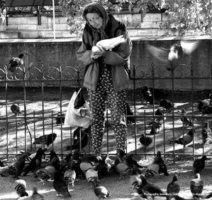 PARIS, la vieille dame et les pigeons