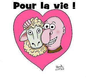 Mouton3b