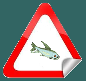 poisson7.png