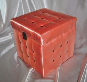 Satincube-rose-fev-2012-05.JPG