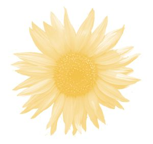 ShabbyP SweetSerenity YellowFlower copie