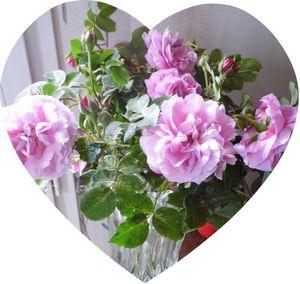 coeur-rose-maison.jpg