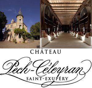 logo Pech chateau