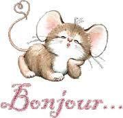 bonjour souris