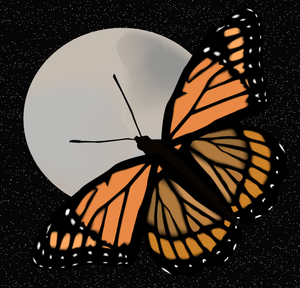 Butterfly_and_moon.png