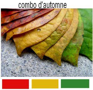 combo-d-automne.jpg