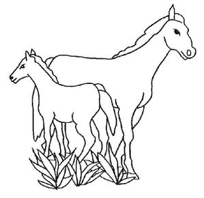 cheval8