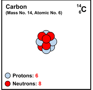 CARBONO-14.png