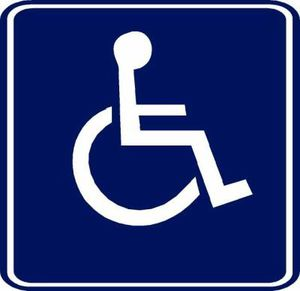 logo-handicap.jpg