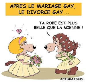 mariage-gay-divorce-gay-L-lU05kX.jpeg