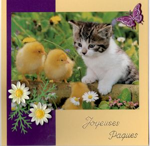 carte paques chat 001