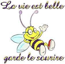abeilles-1.jpg