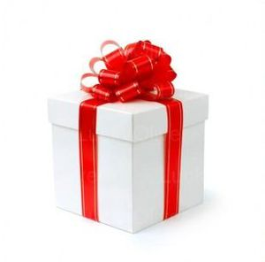 Christmas-gift-red-bow.jpg