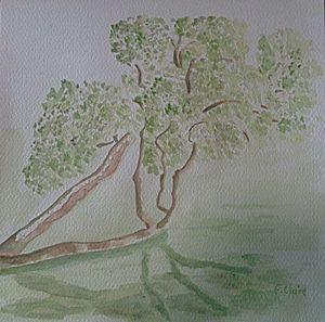 Sous les arbres de Branféré F. Claire