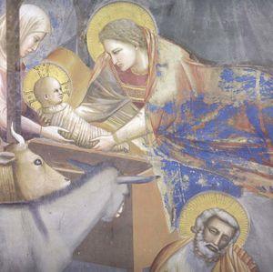 giotto-chapelle-des-scrovegni.1230052980.jpg