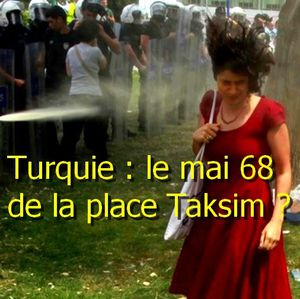 turquie-taksim-actualites-news-in-natures-paul-keirn.jpg