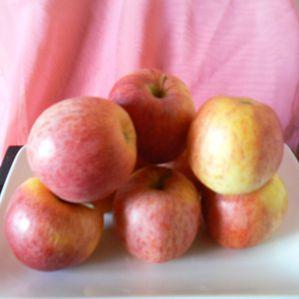 Pain d'épices à la compote de pommes