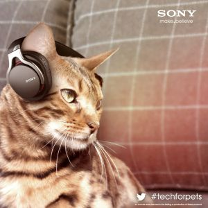 sony-chat_animalia.jpg