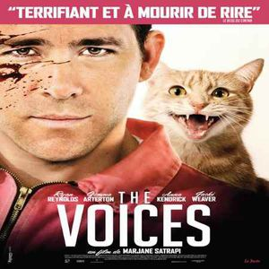 The-Voices-www.zabouille.over-blog.com.jpg