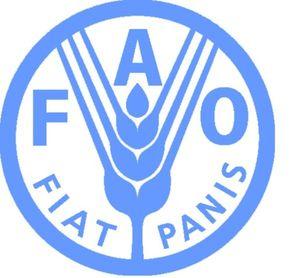 La FAO félicite Cuba comme pays pionnier dans l'éradication de la faim dans le Tiers-monde