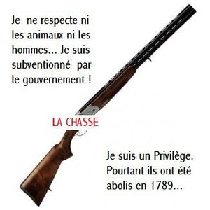 http://img.over-blog.com/300x300/1/21/97/70/A-2011/fusil-anti-chasse-.jpg