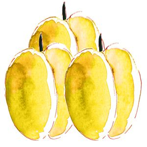 illustration-prunne-jaune-a-l-aquarelle.jpg