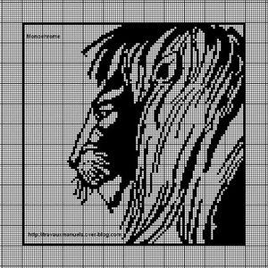 Le roi de la jungle04